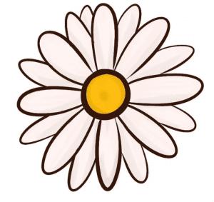cách vẽ bông hoa  HƯỚNG DẪN CÁCH VẼ BÔNG HOA ĐƠN GIẢN CHO BÉ C4 300x283
