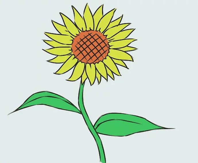 cách vẽ bông hoa  HƯỚNG DẪN CÁCH VẼ BÔNG HOA ĐƠN GIẢN CHO BÉ HD5