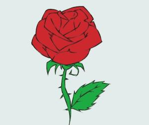 cách vẽ bông hoa  HƯỚNG DẪN CÁCH VẼ BÔNG HOA ĐƠN GIẢN CHO BÉ HH6 300x252