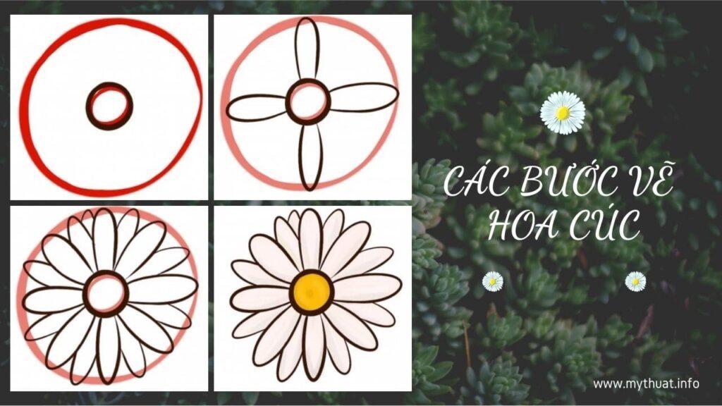 Các bước vẽ hoa cúc - cách vẽ bông hoa