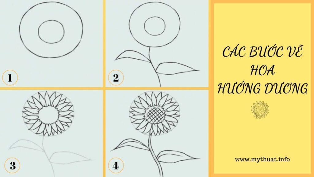 Các bước vẽ hoa hướng dương