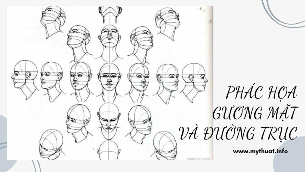 Phác họa gương mặt và đường trục