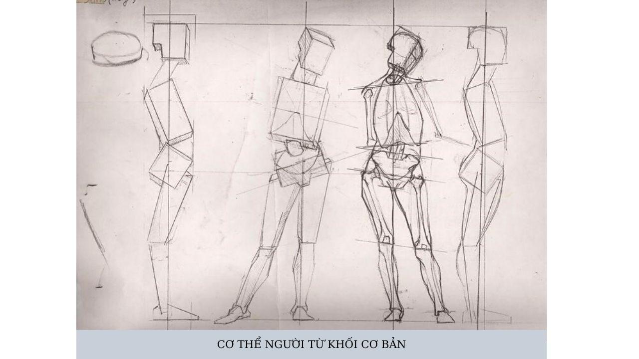 Hình 7: cơ thể người từ khối cơ bản (Nguồn: Pinterest)