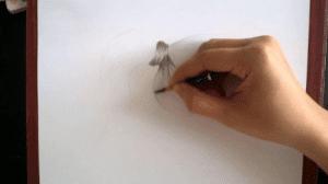 học vẽ tranh bút chì  Hướng dẫn những kỹ năng cần có khi học vẽ tranh bút chì 4 3 300x168