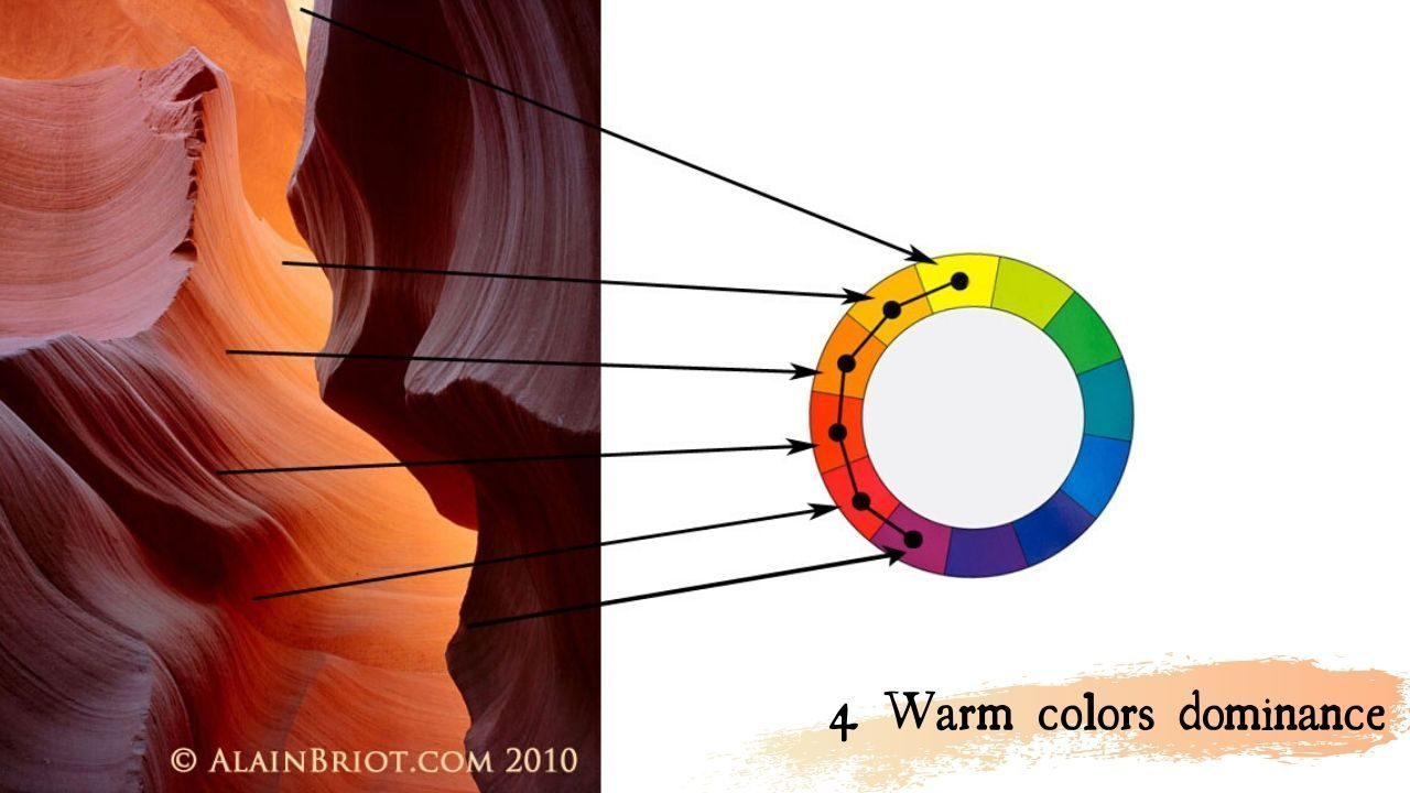 4 warm colors dominance