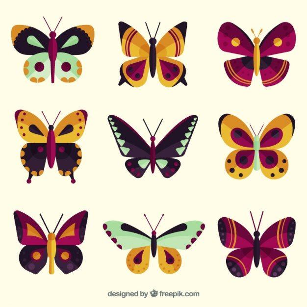 Cách điệu họa tiết con bướm