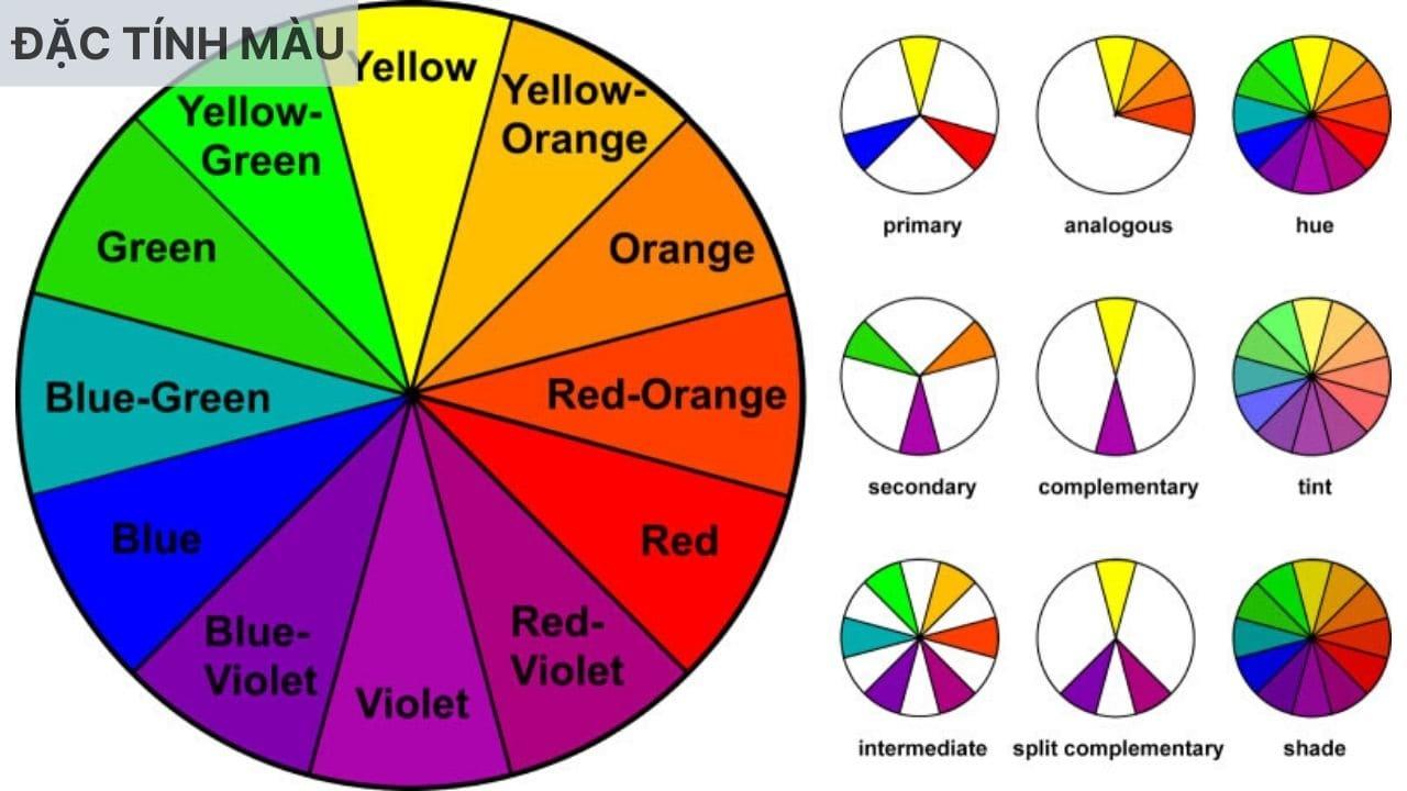 Đặc tính màu