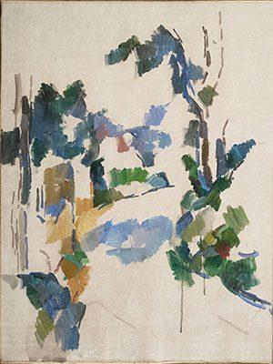 Study of Trees (c.1904)  DANH HỌA PAUL CÉZANNE VÀ HẬU ẤN TƯỢNG Study of Trees c
