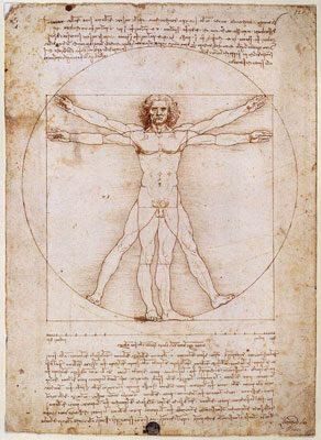 The Vitruvian Man (c.1485) LEONARDO DA VINCI HỌC GIẢ VĨ ĐẠI The Vitruvian Man c
