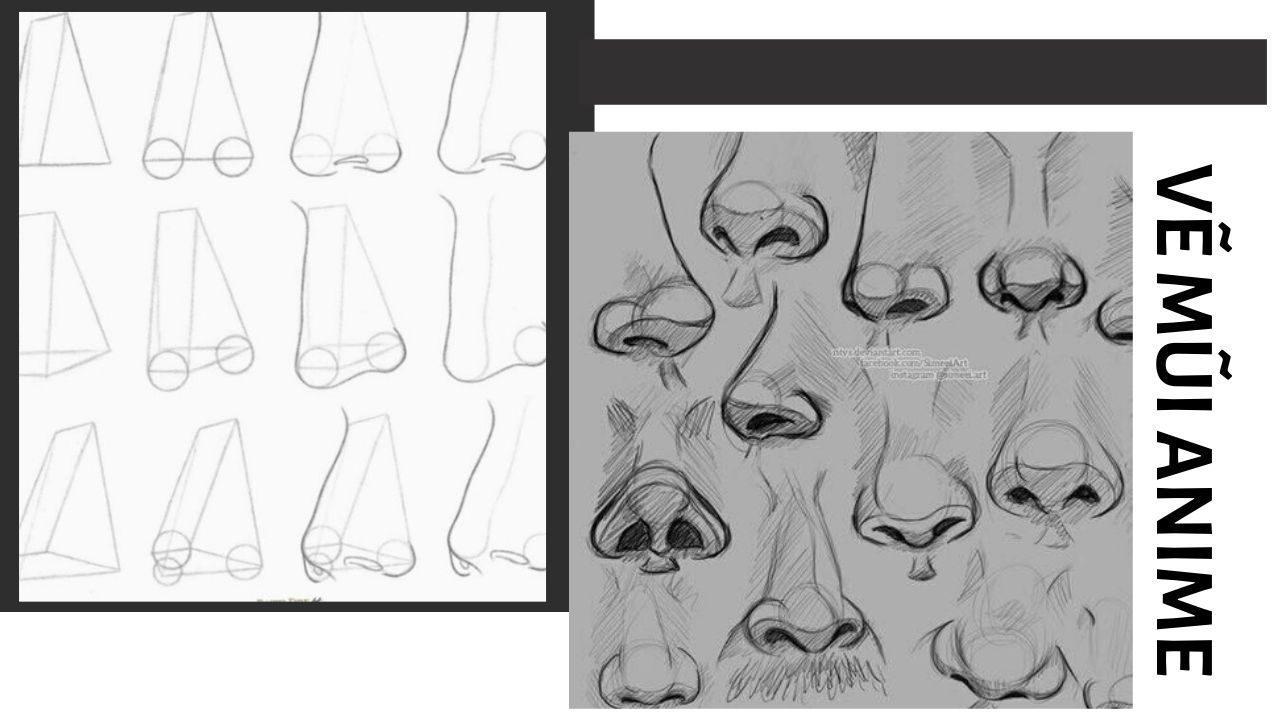Cách vẽ mũi