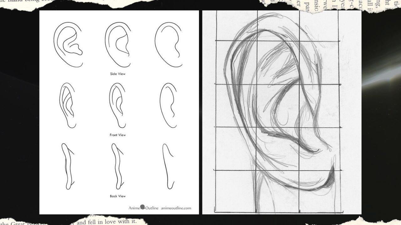 cách vẽ tai